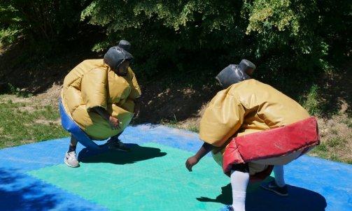 Séminaire Combat de Sumo dans le Beaujolais